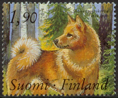 1-suomenpystykorva-1989.jpg